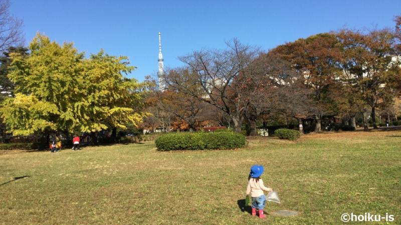 青空の下で遊んでいる子ども