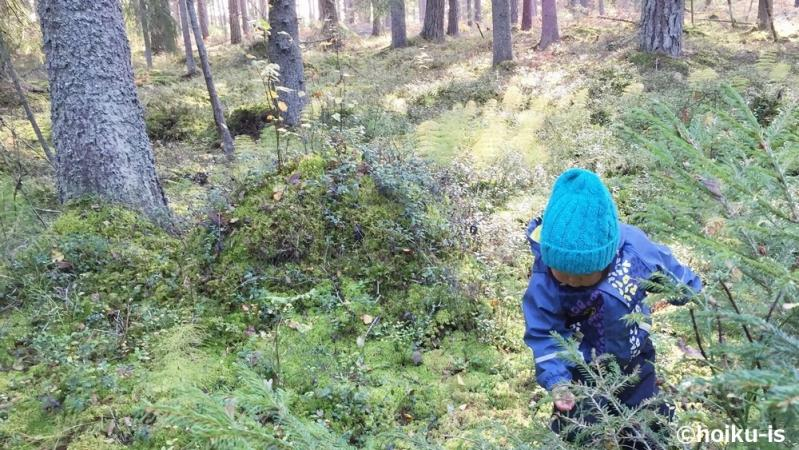 森の中で遊ぶ子ども