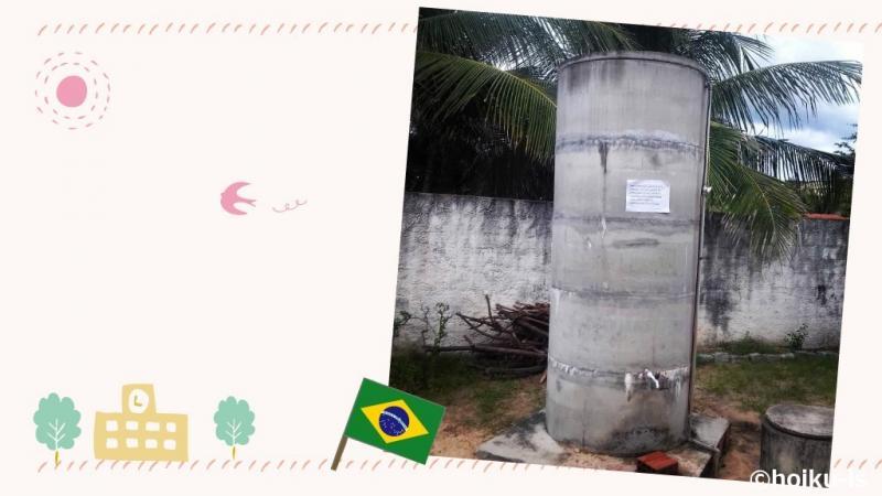 ブラジルカノア保育園コラムのメイン写真