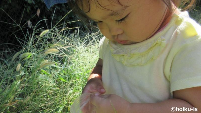 自然の中で遊んでいる女の子