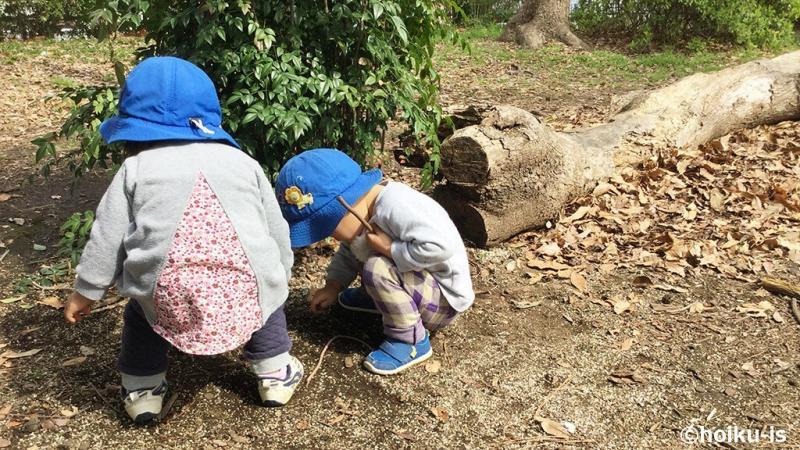 自然の中で遊ぶ子ども達