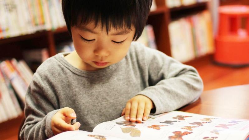図鑑を読んでいる男の子